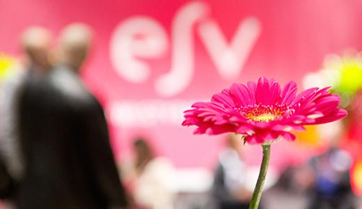 Temabild med en blomma i förgrunden och människor och ESV:s logga i bakgrunden