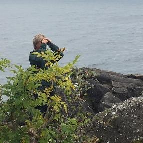 En person står bakom några buskar nere vid vattnet. Personen håller en kikare framför ögonen.