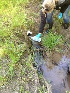 En person står vid ett vattenutsprång och fyller på en flaska med vatten.