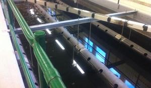 Bild inifrån ett avloppsreningsverk med vattenbassänger och rör.