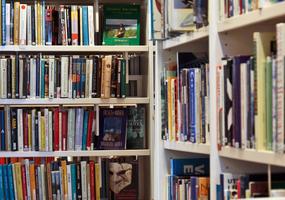 Böcker i bokhyllor.