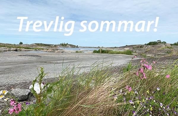 Sommarhälsning med flack berghäll på Hummelskär med midsommarblomster i förgrunden. Foto: PetraMy Börjesson.