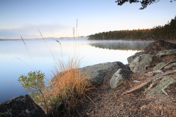 Spegelblank sjö med skog runtom. Foto: Martin Fransson.